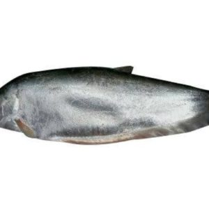 Chitol Fish 1 Kg